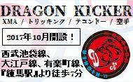 Dragon Kicker
